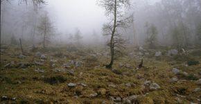 Gruselige Landschaften aus Horrorfilmen